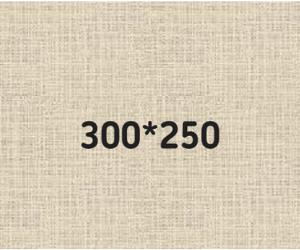 баннер 300*250